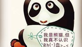 熊猫型血男人的性格特点解析