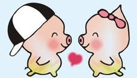 属猪熊猫型血的性格有什么特点