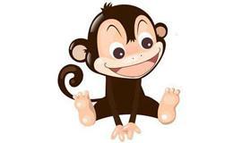 属猴熊猫型血的性格有什么特点