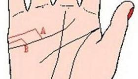 手相婚姻线图解:夫妻不和的手相图