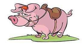 属猪摩羯座A型血的人性格有什么特征