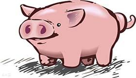 属猪双鱼座A型血的人性格有什么特征