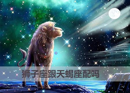 狮子座跟天蝎座配吗