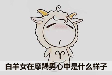白羊女在摩羯男心中是什么样子
