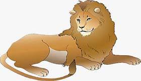 属猪狮子座AB型血的人性格有什么特征