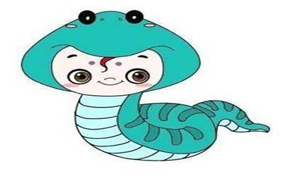 属蛇双鱼座O型血的人性格有什么特征