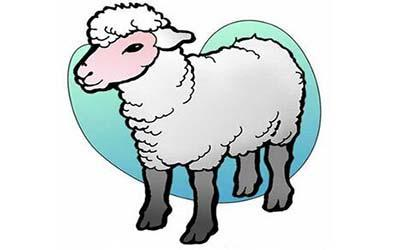 属羊双鱼座O型血的人性格有什么特征