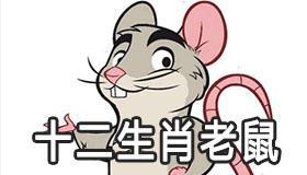 十二生肖老鼠象征着什么