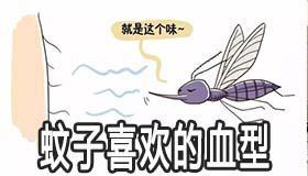 蚊子喜欢的血型是什么 这几类人要注意