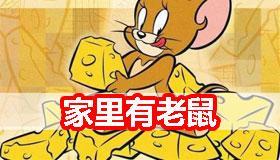 家里有老鼠有什么不好的预兆吗