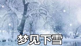 做梦梦见下雪怎么回事 是好兆头吗