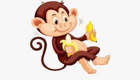 生肖属猴的和什么属相最配最长久呢