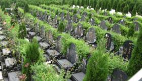 做梦梦到公墓什么意思 是好兆头吗