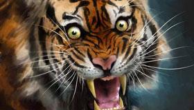 农历十一月出生的属虎人运势