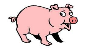 农历12月出生的属猪人运程