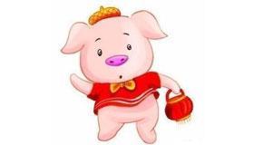 农历六月出生的生肖猪运势