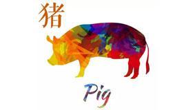 农历二月份出生的生肖猪运势