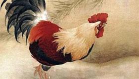 1969年出生的52岁属鸡人2021年运势及运程