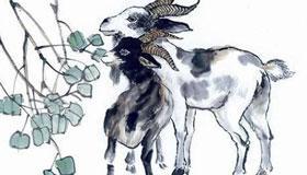 54岁生肖属羊的女性2021年运势