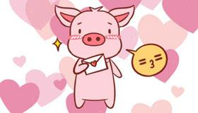 属猪男一生的命运和婚姻介绍