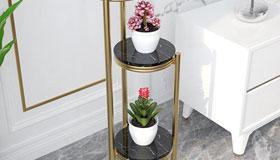 客厅花盆位置摆放风水有哪些讲究
