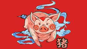 老人说生肖属猪的命就一定好是真的吗