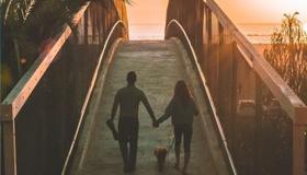 属马的人2021年结婚会有好运气吗