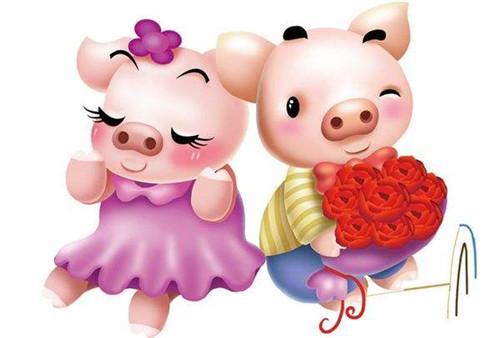 属猪人的婚姻与命运 生肖猪的婚姻怎么样
