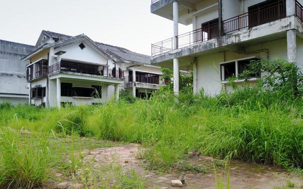 家门口杂草丛生会影响风水吗?