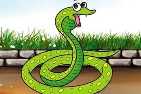 2021年1989年属蛇人的全年运势解读