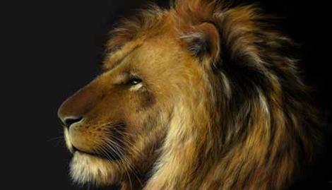 狮子座男人的性格缺陷有哪些不能忽视的
