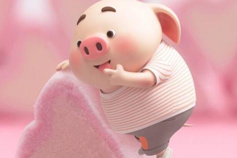 属猪95年10月份出生的人哪一年结婚好 属猪最佳婚配介绍