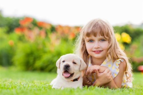 属狗的女孩起名宜用字 以及属狗吉祥名字